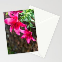 Hot Pink Flowers Stationery Cards