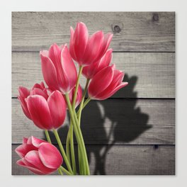 Pink Tulips & Shadow Wooden Background Canvas Print