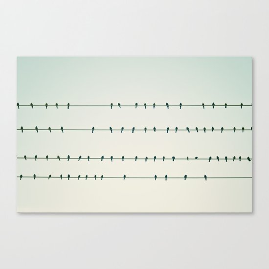 Birds on Four Wires  Canvas Print