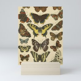 Beautiful Butterflies Mini Art Print