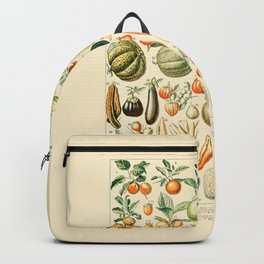 Autumn Harvest // Fruits by Adolphe Millot 19th Century Pumpkins Science Textbook Artwork Backpack