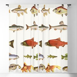 Fishing Line Blackout Curtain