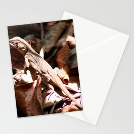 Forest Lizard Stationery Cards
