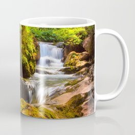 Swiss rapids. Coffee Mug