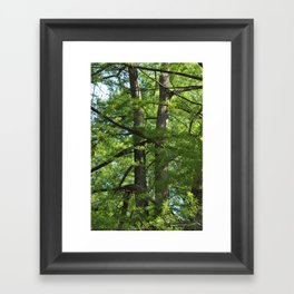tangled twins Framed Art Print