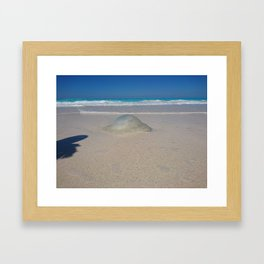 the Gilly fish northern coast of Egypt Framed Art Print