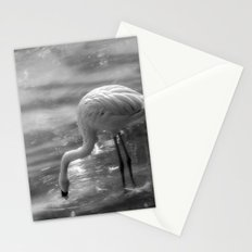 Flamingo, Fuerteventura. Stationery Cards