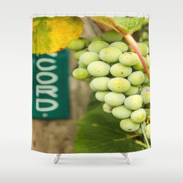 Green Concord Grapes Shower Curtain