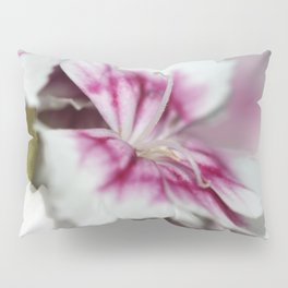 Sweet William from the Super Duplex Bluepoint Mix Pillow Sham