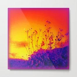Purple Persuasion  Metal Print