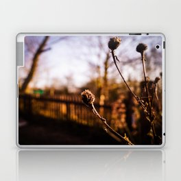 Spring Blurs Laptop & iPad Skin