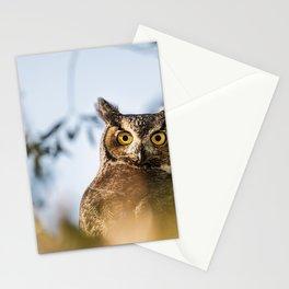 Okanagan Owl Stationery Cards