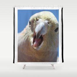 Angry Galah Shower Curtain