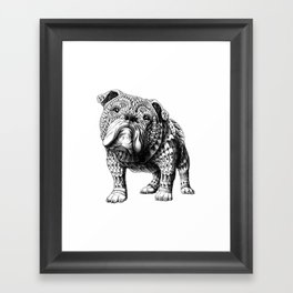 English Bulldog Framed Art Print