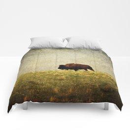 Lone Buffalo Comforters