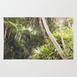 Florida Dreaming Rug