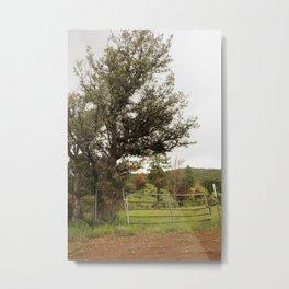 Western Image Metal Print