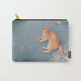 Cat Lounging Carry-All Pouch