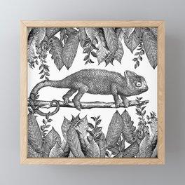Botanical Chameleon  Framed Mini Art Print
