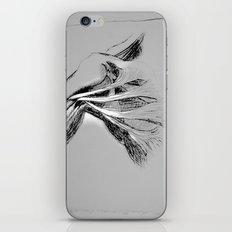 Anatomy 101 iPhone & iPod Skin
