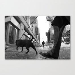 Winter Dog Canvas Print
