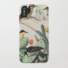 Woodpeckers And Cacti iPhone Case