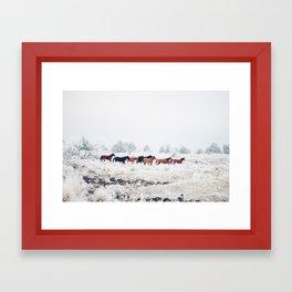 Winter Horse Herd Framed Art Print