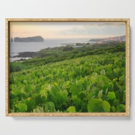 Grapevines and islet Serving Tray