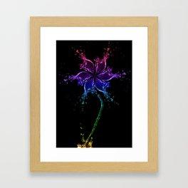 A water flower. Framed Art Print