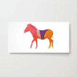Zebra 14A Metal Print