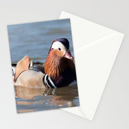Mandarin Stationery Cards