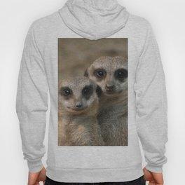 Meerkat 090 Hoody