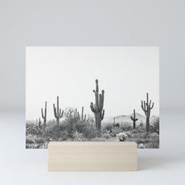 DESERT / Scottsdale, Arizona Mini Art Print