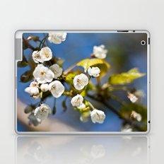 Spring is Near Laptop & iPad Skin