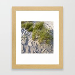 Sand Dune of Denmark Framed Art Print