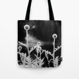 Globe thistle in black and white Tote Bag