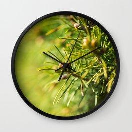 Fir tree green background Wall Clock