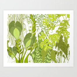 Plant Life in White Art Print