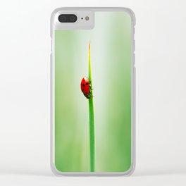 Vertigo Clear iPhone Case