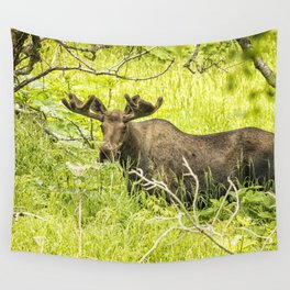 Bull Moose in Kincaid Park, No. 2 Wall Tapestry