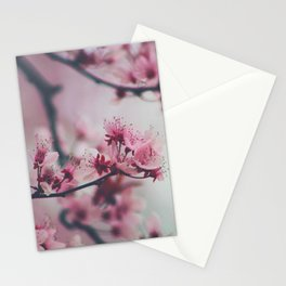 Pink Cherry Blossom On Branch Stationery Cards