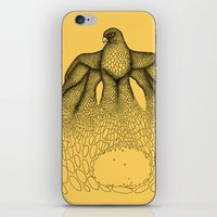 falcon iPhone & iPod Skins featuring Falcon by Julia Kisselmann