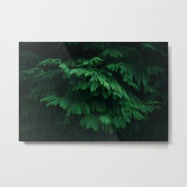 Trees give peace to the souls of men Metal Print