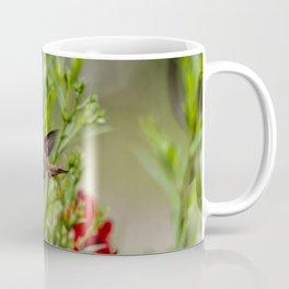 Rufous Hummingbird Feeding, No. 2 Coffee Mug