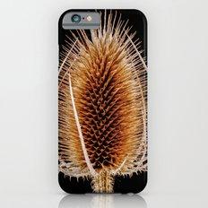 Natural Teasel Slim Case iPhone 6s