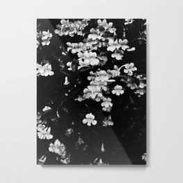 Trumpet Flowers (Black & White) Metal Print