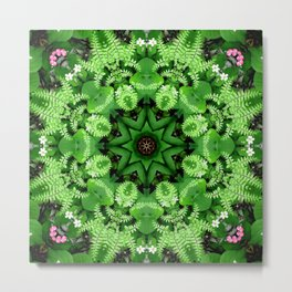 Fern and friends kaleidoscope, mandala - Maidenhair, Adiantum 901 k21 3 Metal Print