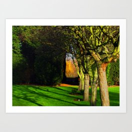 Winter archway in the trees Art Print