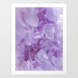 Lyrical Lilacs Art Print