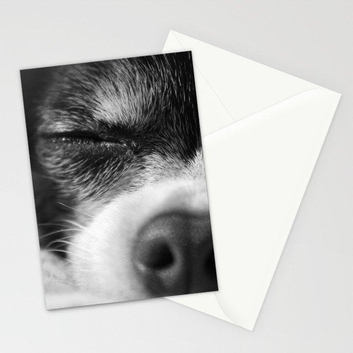 Rufio Sleeping Stationery Cards